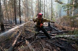 Continue reading: A look at Alberta's wildfire season so far and what the risk is right now