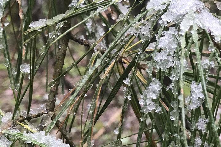 Algonquin Provincial Park saw slight flurries Monday morning.