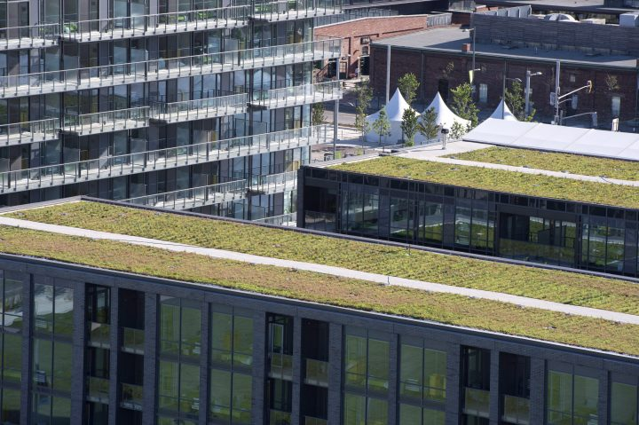 Green roofs at the Pan Am athletes village is shown in Toronto on Friday, June 19, 2015.