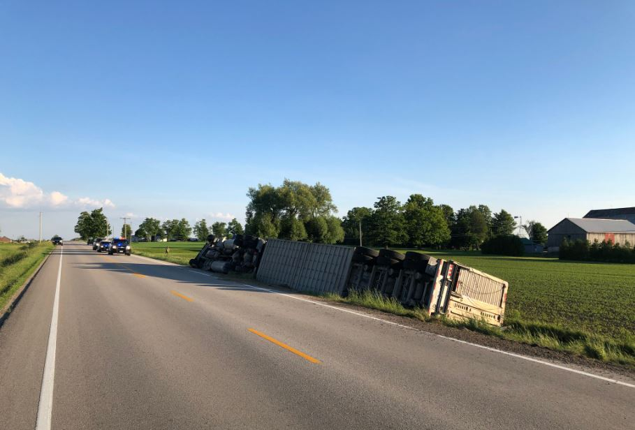 OPP say the driver of the cattle truck was uninjured in the crash.