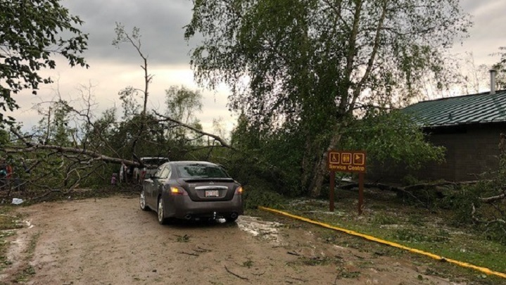 Fallen trees block vehicles from getting through a route at the Murray Doell Campground, in Meadow Lake Provincial Park, Sask. on June 29, 2019.