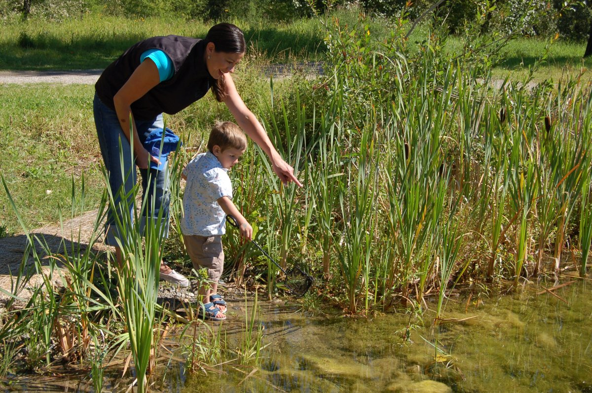 Ontario is investing $20 million to help enhance protection of natural areas across the province.