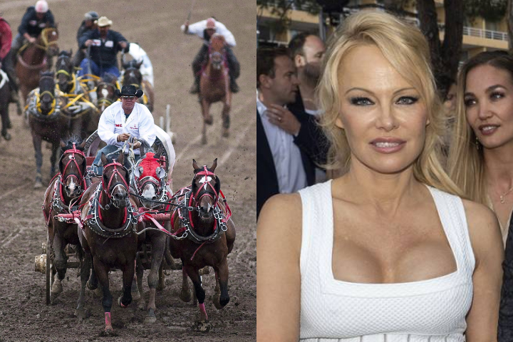 LEFT: Teams compete in a chuckwagon race at the Calgary Stampede in Calgary on July 12, 2010. RIGHT: Pamela Anderson at a fashion show in  Monte-Carlo, Monaco on May 24, 2019.