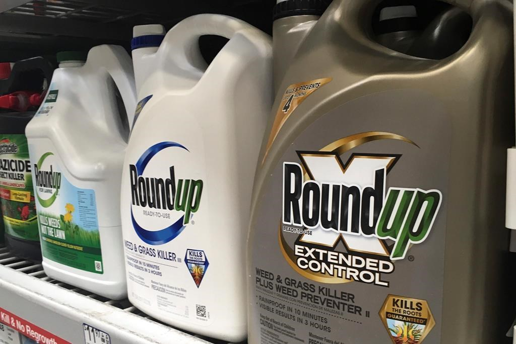 FILE - In this Feb. 24, 2019, file photo, containers of Roundup are displayed on a store shelf in San Francisco.