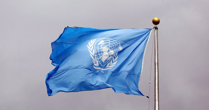 United Nations cancels all in-person meetings after 5 coronavirus cases reported
