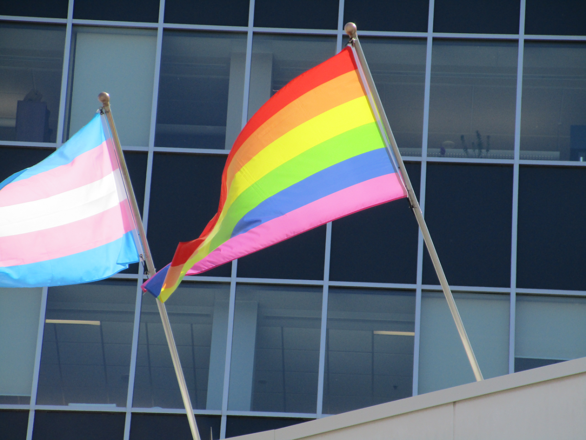 The city raised the Pride and Transgender Pride flags above city hall at the beginning of Pride month, despite the city's LGBTQ2 advisory committee calling on city officials not to do so.