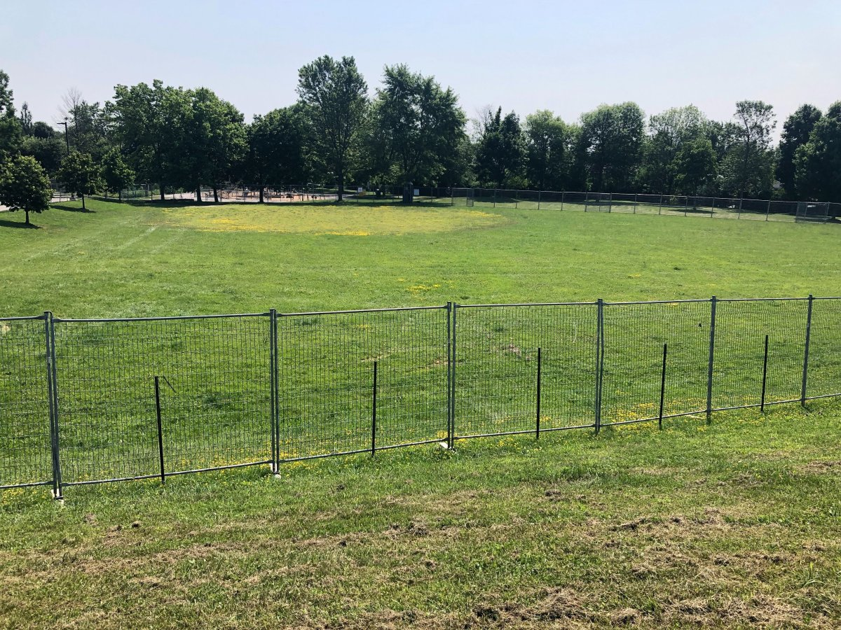 The City of Guelph's first fenced-in dog park opened at Peter Misersky Park in September.