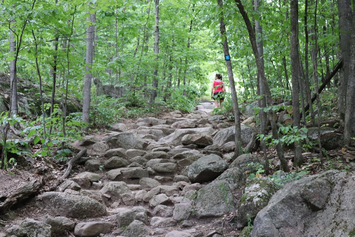 Hiking up the Luskville Falls Trail in Gatineau Park on Saturday, July 27, 2019. Depending on your pace, the hike might take you two to three hours, round trip.