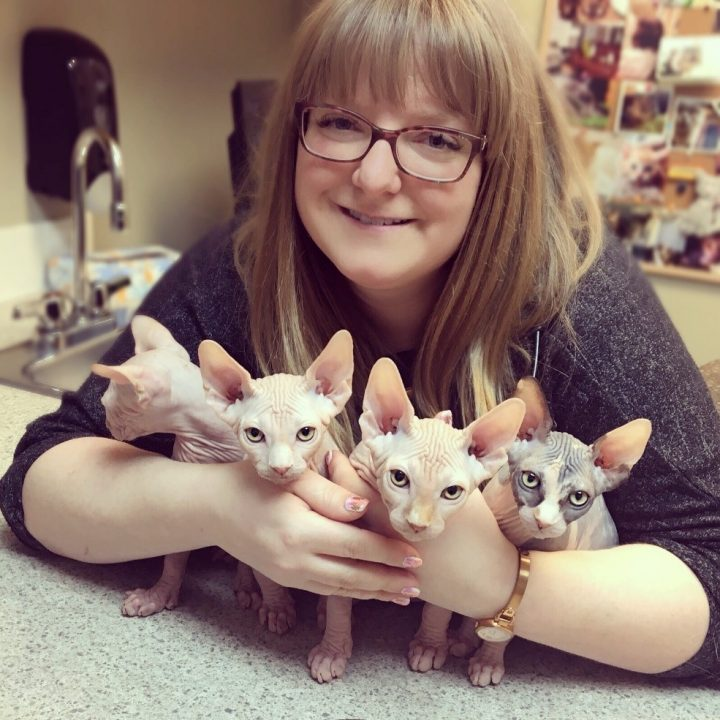 Dr. Kate Lupton has been honoured for improving the welfare of feline patients.