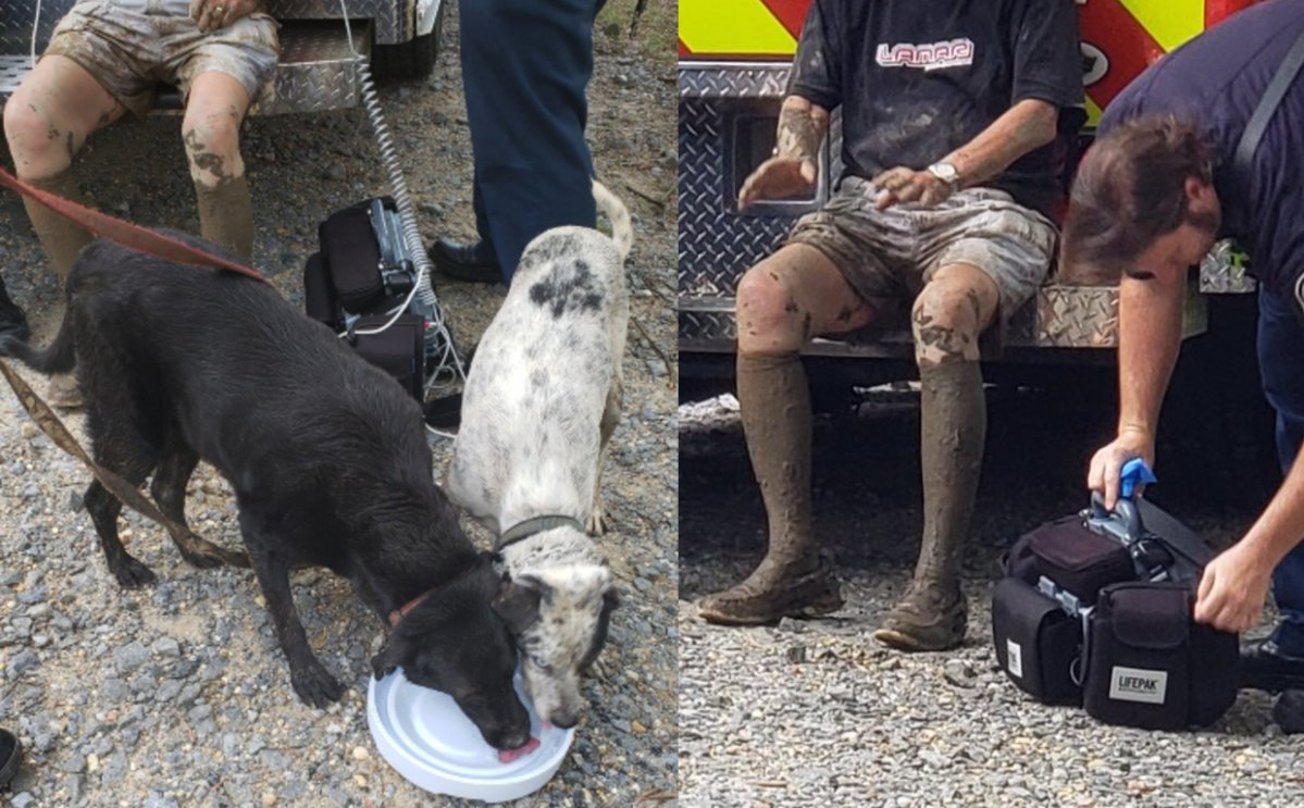 A man was rescued by his two dogs after he found himself stuck knee-deep in mud.