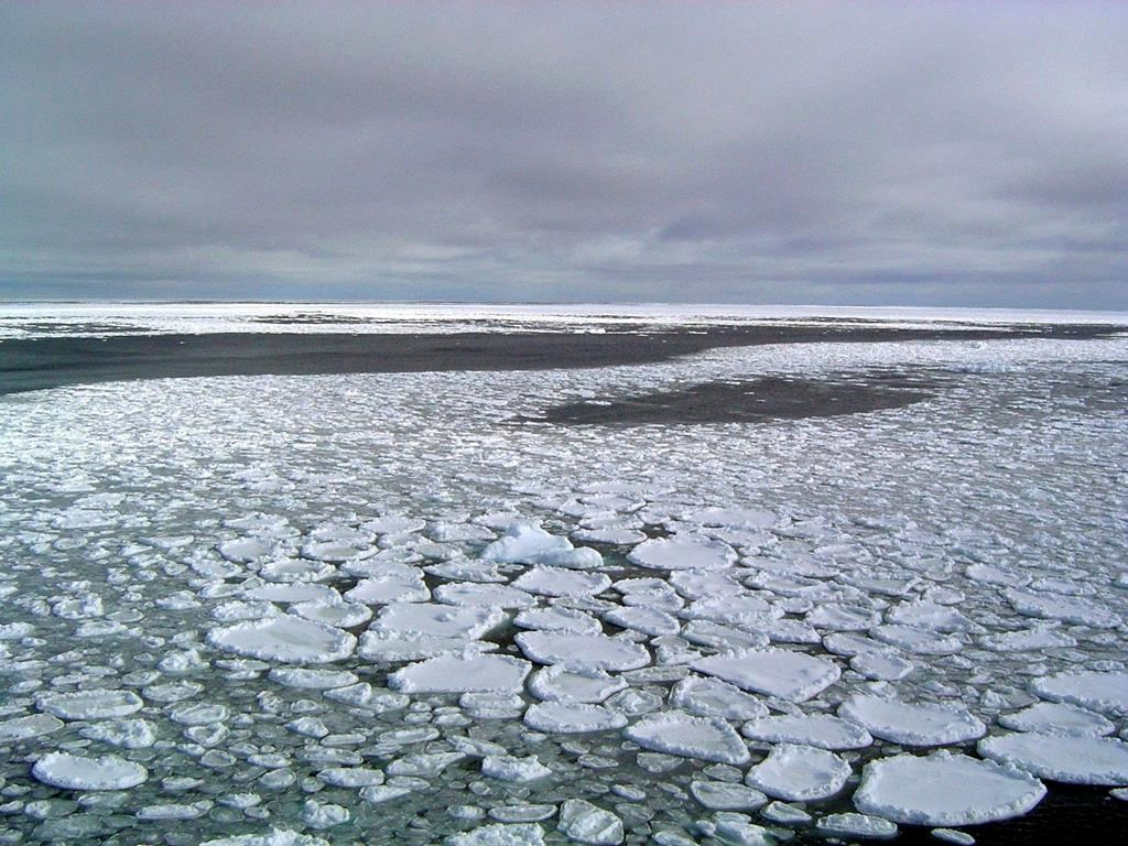 This January 2017 photo provided by Ted Scambos shows sea ice on the ocean surrounding Antarctica during an expedition to the Ross Sea.
