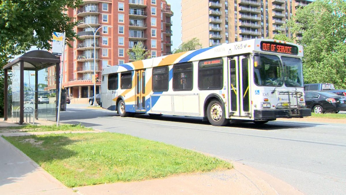 A Halifax Transit bus moves along Robie Street on July 16, 2019.