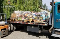 Continue reading: Chase RCMP recover $12K of stolen pet food in rural Shuswap