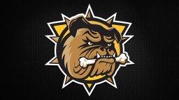 Continue reading: Hamilton Bulldogs promote Laise to head coach, move Matsos to associate role