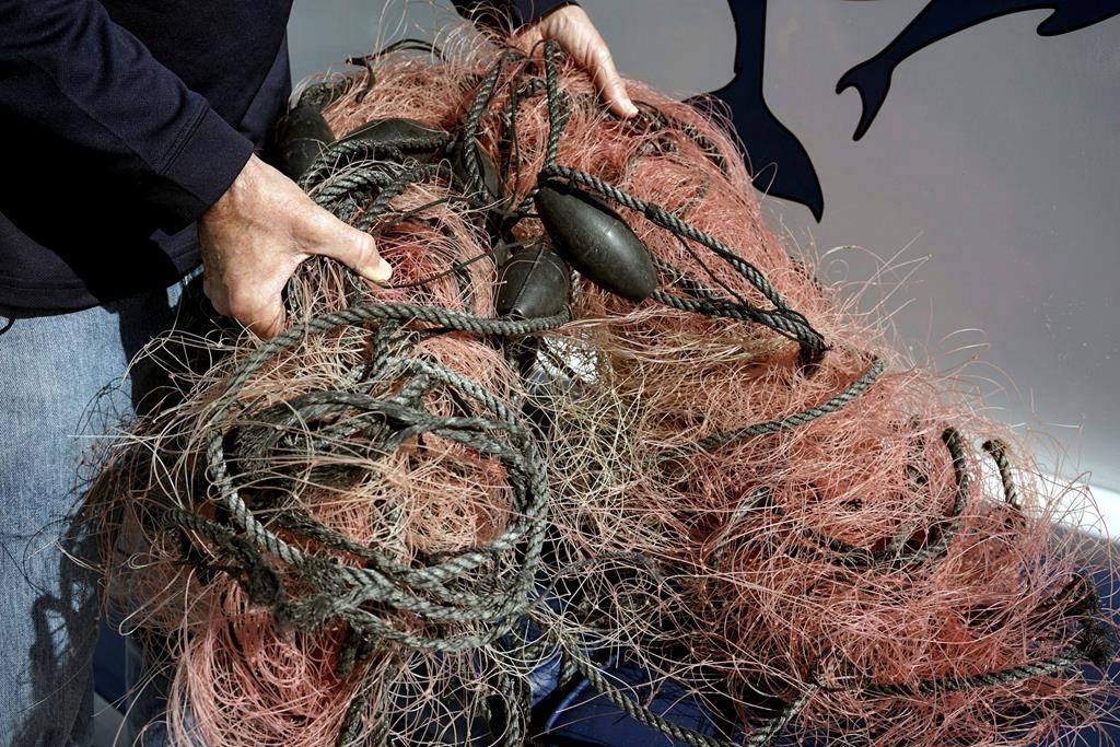 Capt. David Anderson, of Captain Dave's Dolphin and Whale Watching Safari, in Dana Point, Calif., shows a net that a whale was found entangled in Monday, Nov. 30, 2015. THE CANADIAN PRESS/AP-Christine Armario.