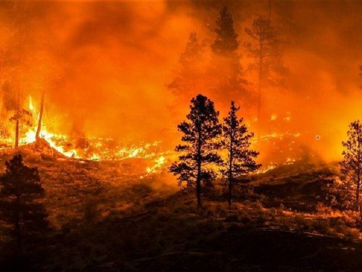 Creators of a mobile app that tracks wildfires say they have been paying hundreds of dollars each month to keep the app running.
