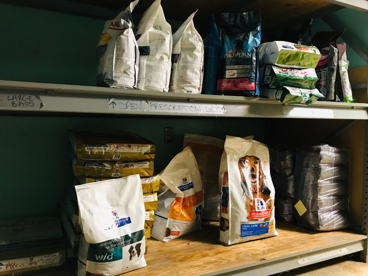 Humane Society London and Middlesex is in urgent need of pet food to support the 200-250 animals who call the shelter home.