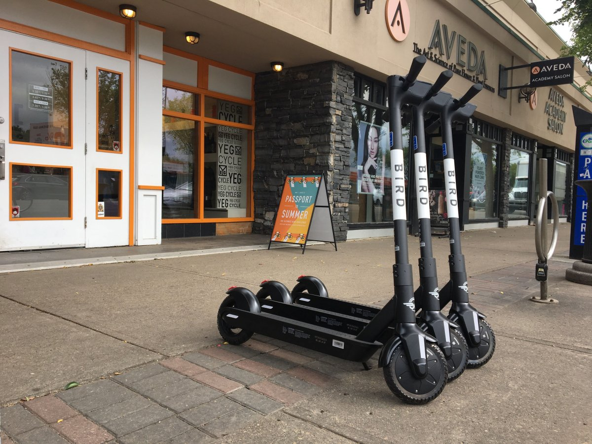 Bird e-scooters spotted on Whyte Avenue near 106 Street in Edmonton's Old Strathcona area on Friday, August 16, 2019.