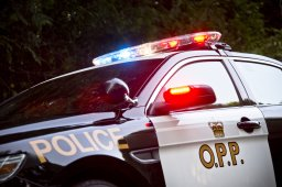 Continue reading: OPP arrest 4 Amherstview men in connection with 2 dozen reported break-ins