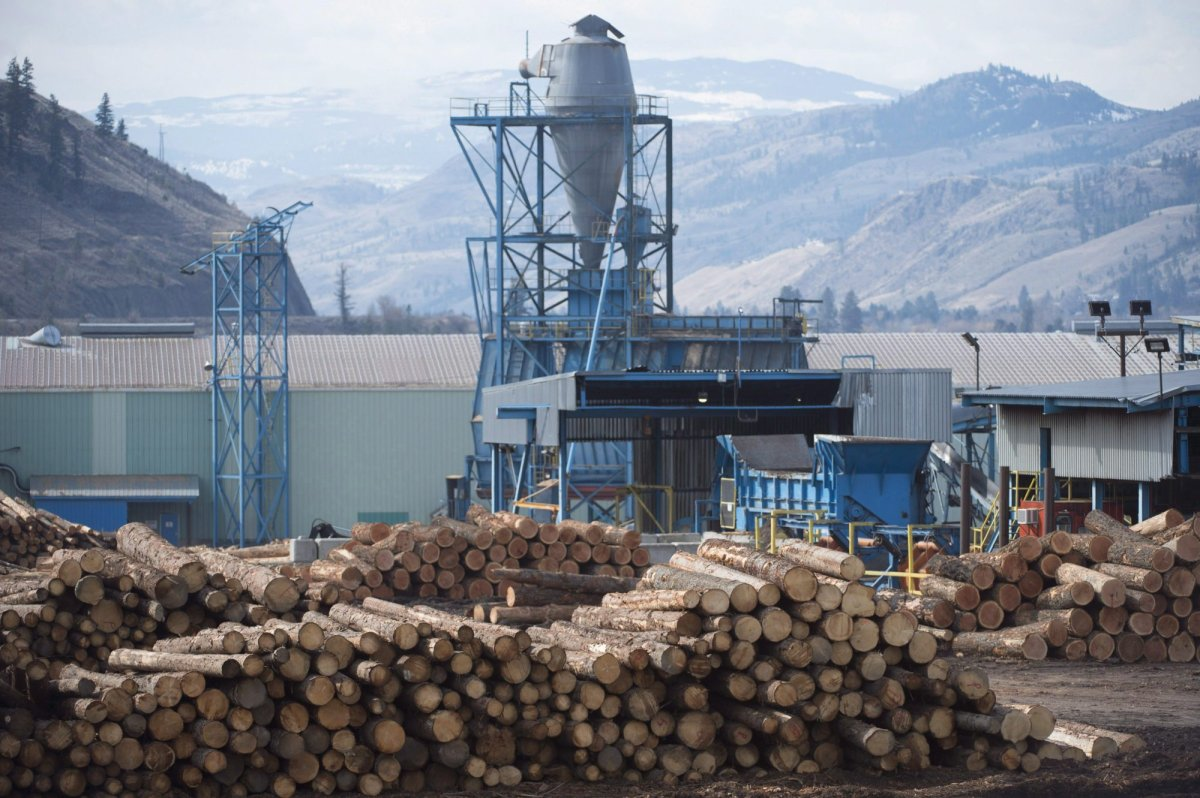 An energetic rally by workers in the north-central British Columbia community of Mackenzie has highlighted the desperate situation facing many forestry-dependent communities across the province. Softwood lumber is pictured at Tolko Industries in Heffley Creek, B.C., Sunday, April, 1, 2018. Three wood products operations in Mackenzie closed indefinitely or cut back hours this summer, blaming high log costs and adverse market conditions.