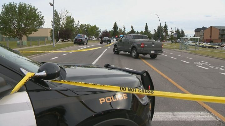 A pedestrian was hit by a vehicle in northeast Calgary on Saturday, Aug. 17, 2019.