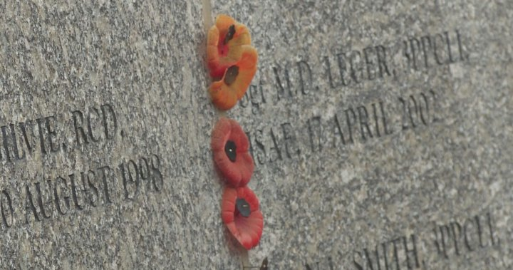 Veterans, family members gather in Calgary to remember fallen Canadian peacekeepers – Calgary