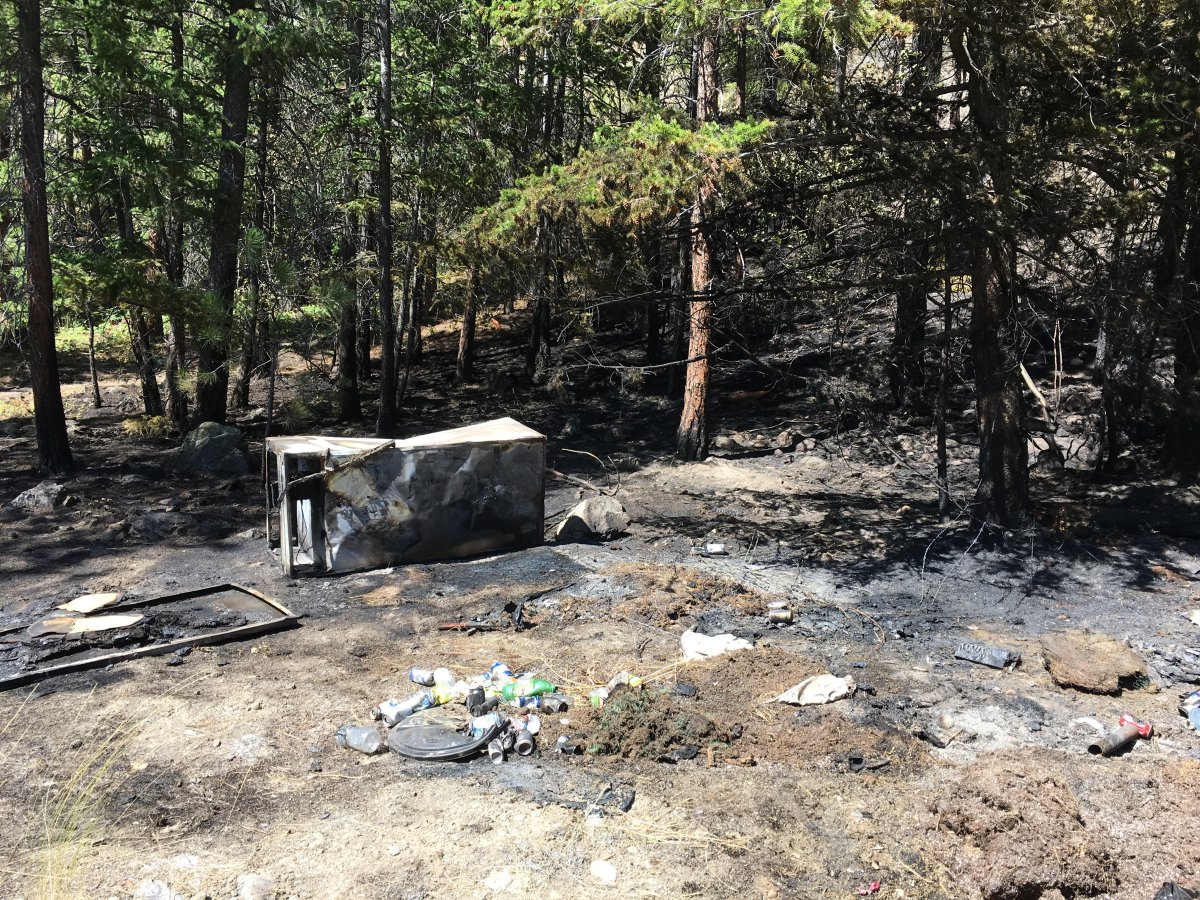 Multiple agencies are investigating what sparked a wildfire in West Kelowna on Saturday night.