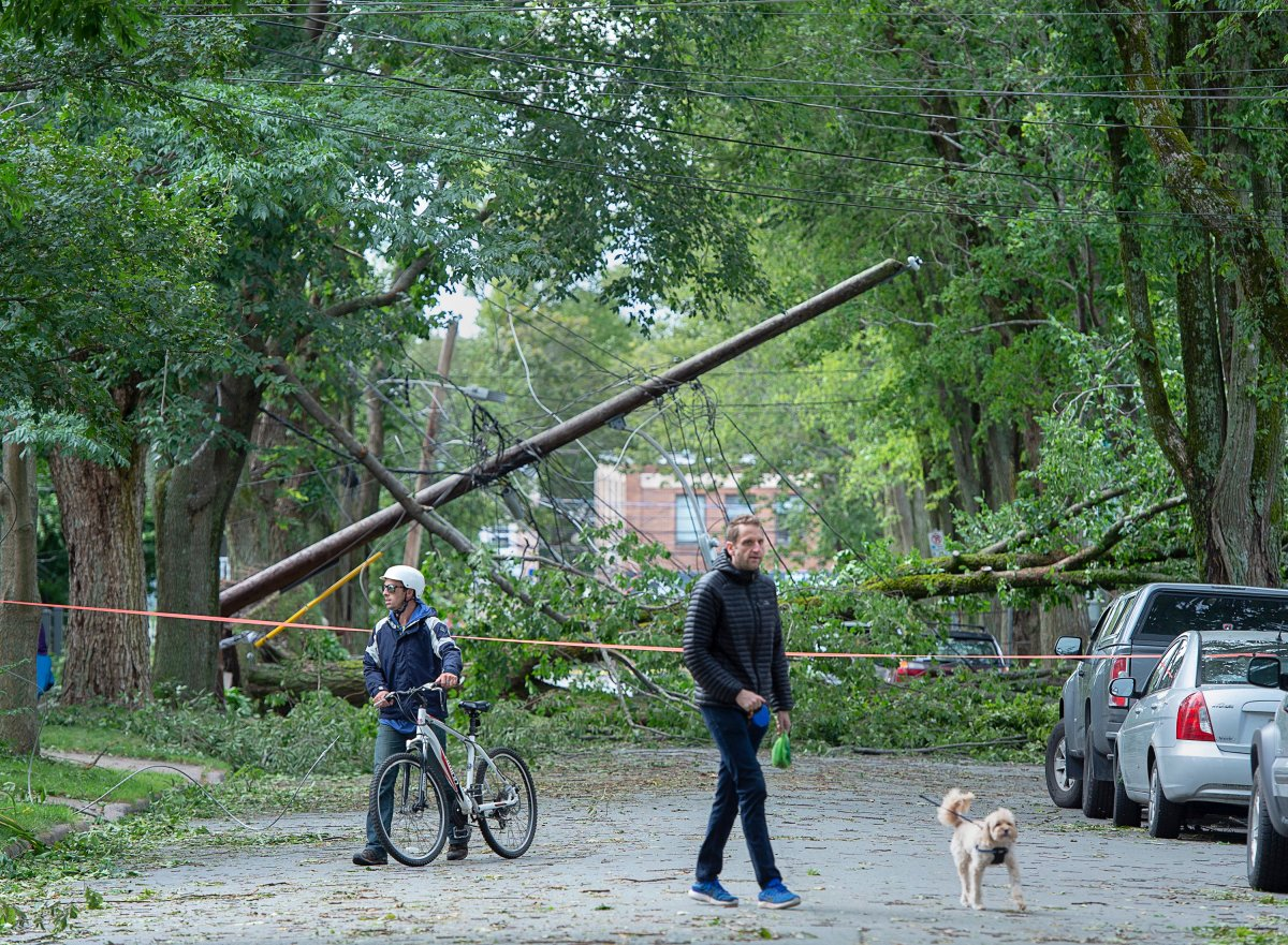 A street is blocked by fallen trees in Halifax on Sunday, Sept. 8, 2019.