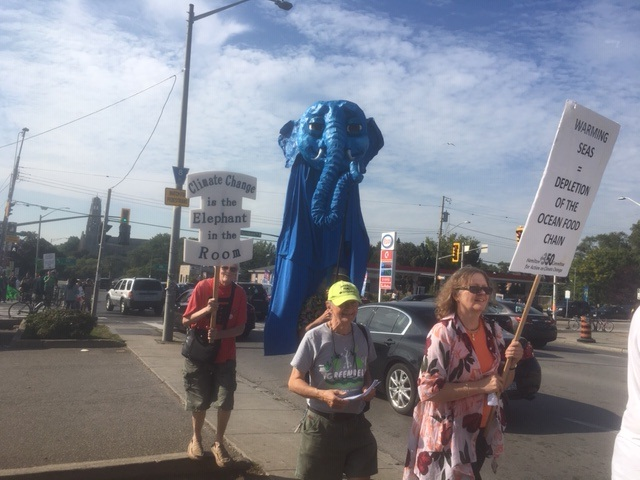 Demonstrators have marchers from Hamilton's west end to city hall to demand climate action.