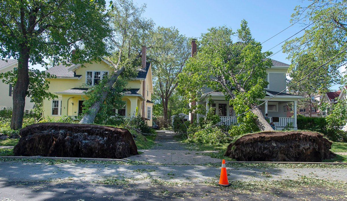 Two fallen trees rest on neighbouring houses in Halifax on Sunday, Sept. 8, 2019 after hurricane Dorian.