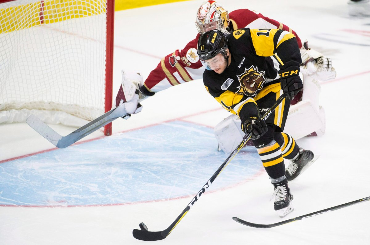 OHL Hamilton Bulldogs forward Isaac Nurse (11) fails to get a shot past QMJHL Acadie-Bathurst Titan goalie Evan Fitzpatrick (31) during first-period Memorial Cup action in Regina on Tuesday, May, 22, 2018.