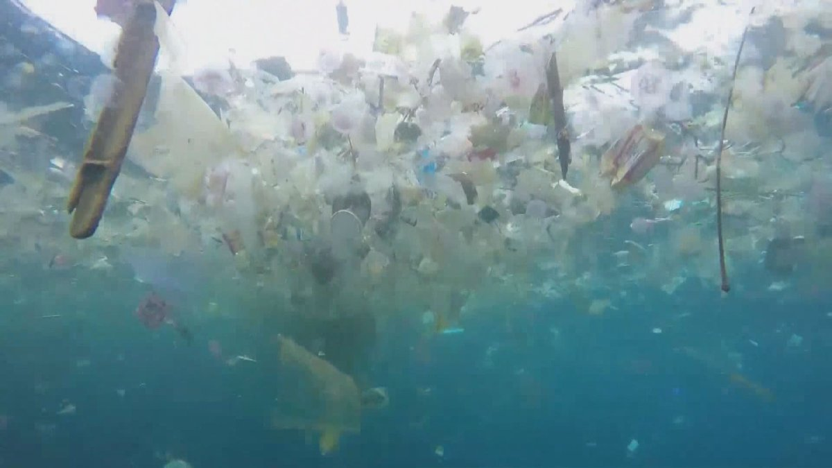 A Canadian not-for-profit organization believes they have a solution to plastic pollution.