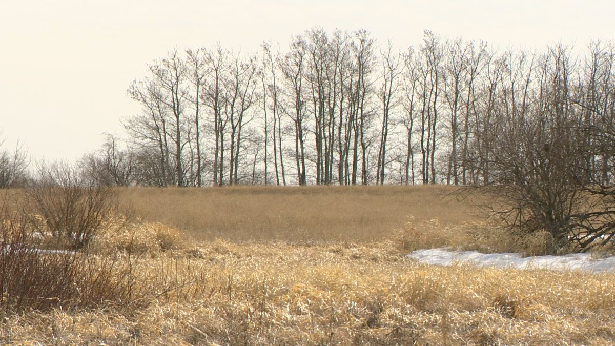Public Pastures — Public Interest expressed its concerns regarding the Saskatchewan government's recent conditional approval of the Albany Potash Project.