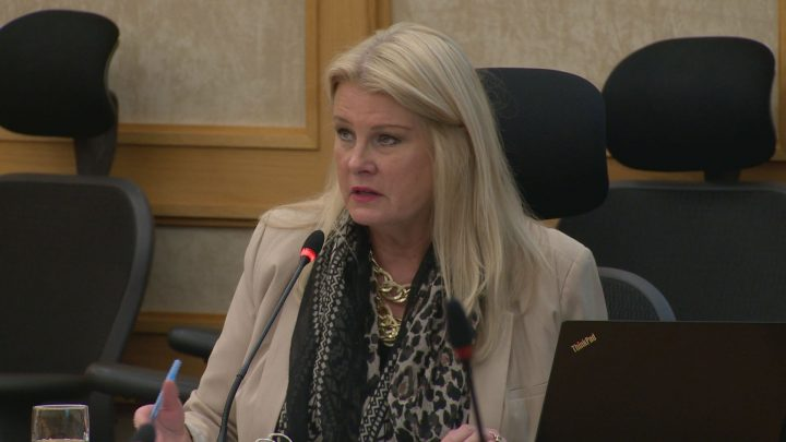 Coun. Bev Dubois says the city should review its process to make sure draft documents aren't released to the public when they shouldn't be.