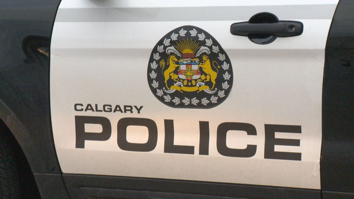 Calgary police responded to a gun complaint in the city's northeast on Sunday, Oct. 20, 2019.