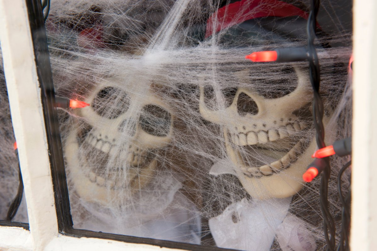 Fake cobwebs and other Halloween decorations could be damaging wildlife.