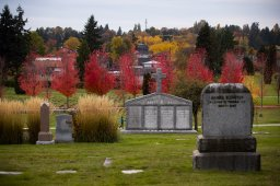 Continue reading: Coronavirus: Vancouver cemetery asks public to go elsewhere for leisure activity