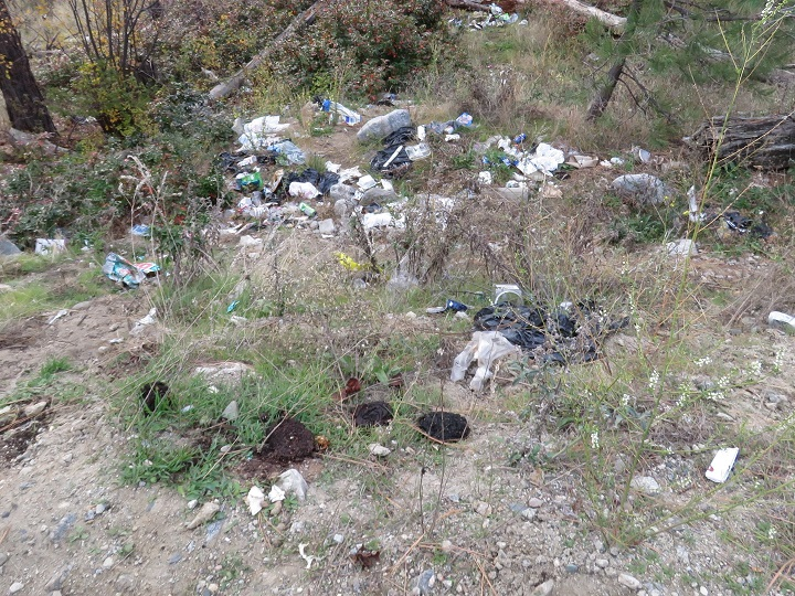 The B.C. Conservation Service says the bear killings were preventable had a local business better managed its garbage.