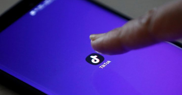 Trump orders TikTok's Chinese owners to divest U.S. operations within 90 days