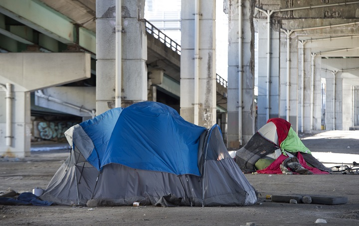 Half of homeless people had a traumatic brain injury (TBI) in their lifetime, researchers found.