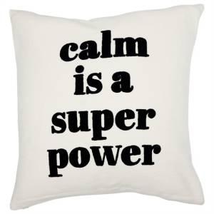 Indigo-pillow