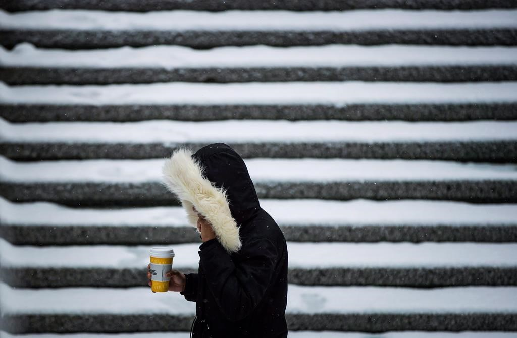 Environment Canada has issued a snowfall warning for much of B.C.'s South Coast.