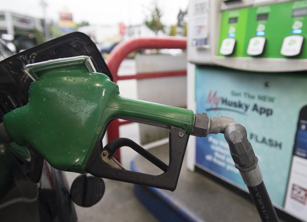 Gasoline prices were up 7.4 per cent compared with December 2018 when crude oil prices fell amid a global oversupply.