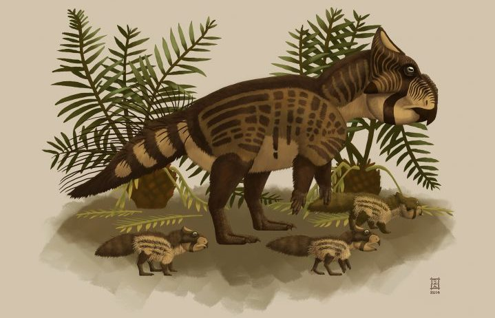 A Ferrisaurus is seen in this undated illustration. A geologist's discovery of a mysterious claw in rocks along a rail line in British Columbia's northern wilderness almost 50 years ago has led to the recognition of the first dinosaur species unique to the province.