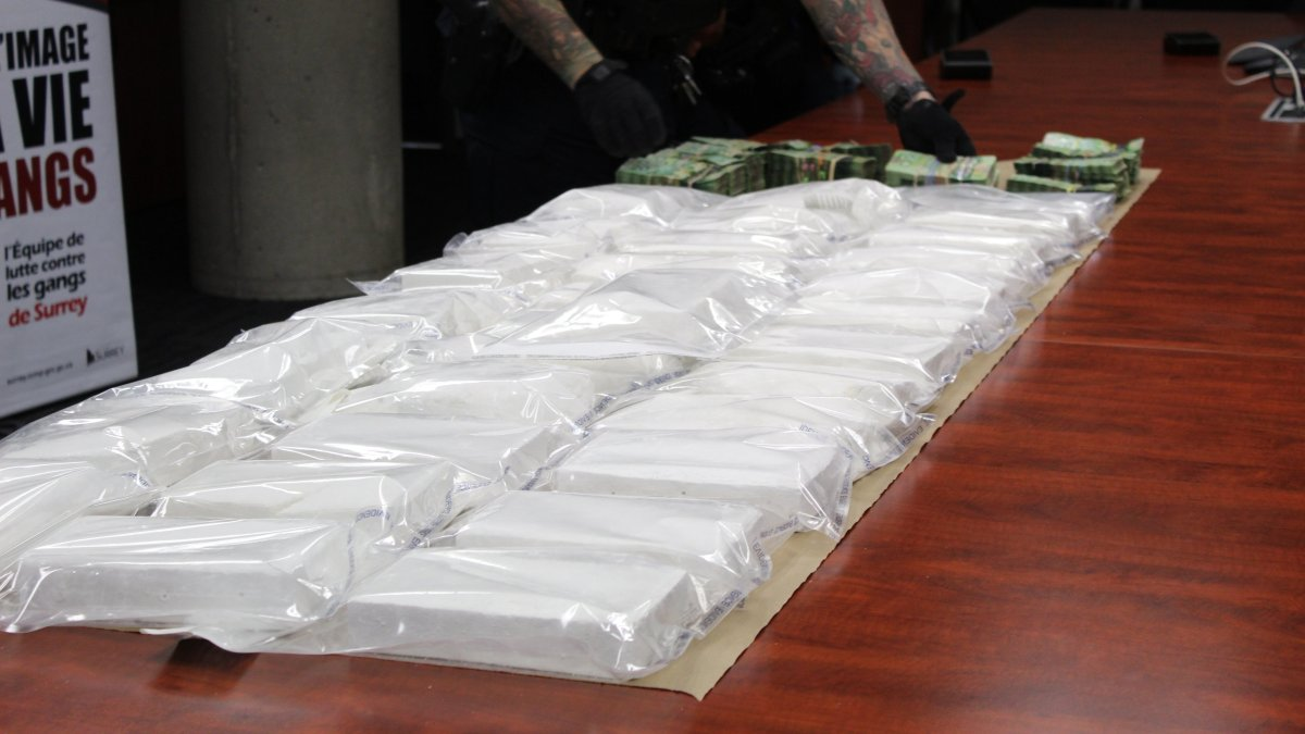 Surrey RCMP display several packages of cocaine and piles of cash seized in three separate busts in Surrey over the month of November.