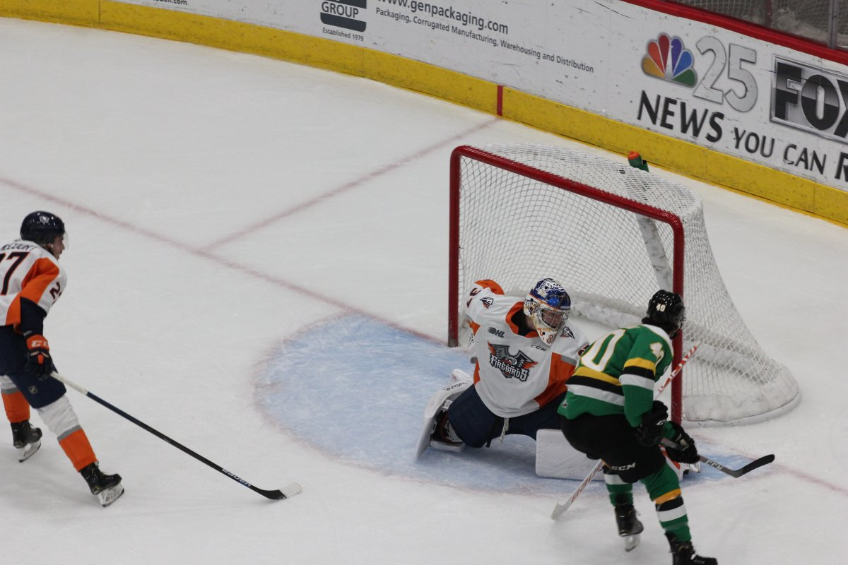 Tonio Stranges of the London Knights scores his first of two goals against the Flint Firebirds in a 4-1 London win on Nov. 30, 2019.