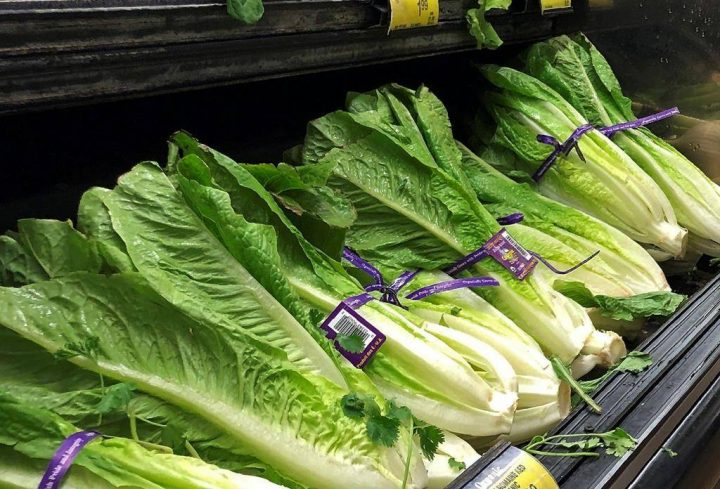 This Nov. 20, 2018 file photo shows Romaine Lettuce in Simi Valley, Calif.