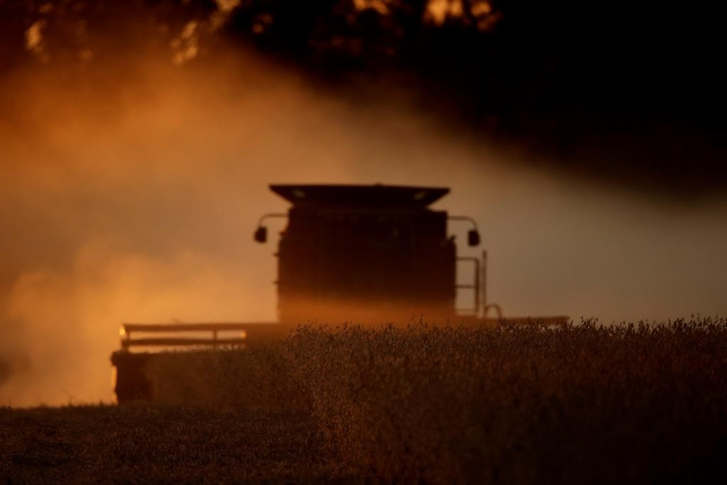 Saskatchewan Agriculture says four per cent of the 2020 crop is harvested as SaskPower urges farmers to exercise caution around overhead power lines.