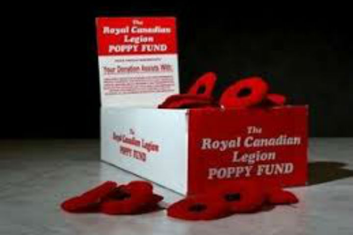 Police say a woman from Milton stole three poppy donation boxes in and around Remembrance Day.