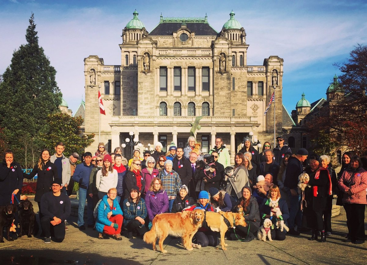 A group gathers to honour animals that died in war during Remembrance Day ceremonies in Victoria, B.C. on Nov. 11, 2019.